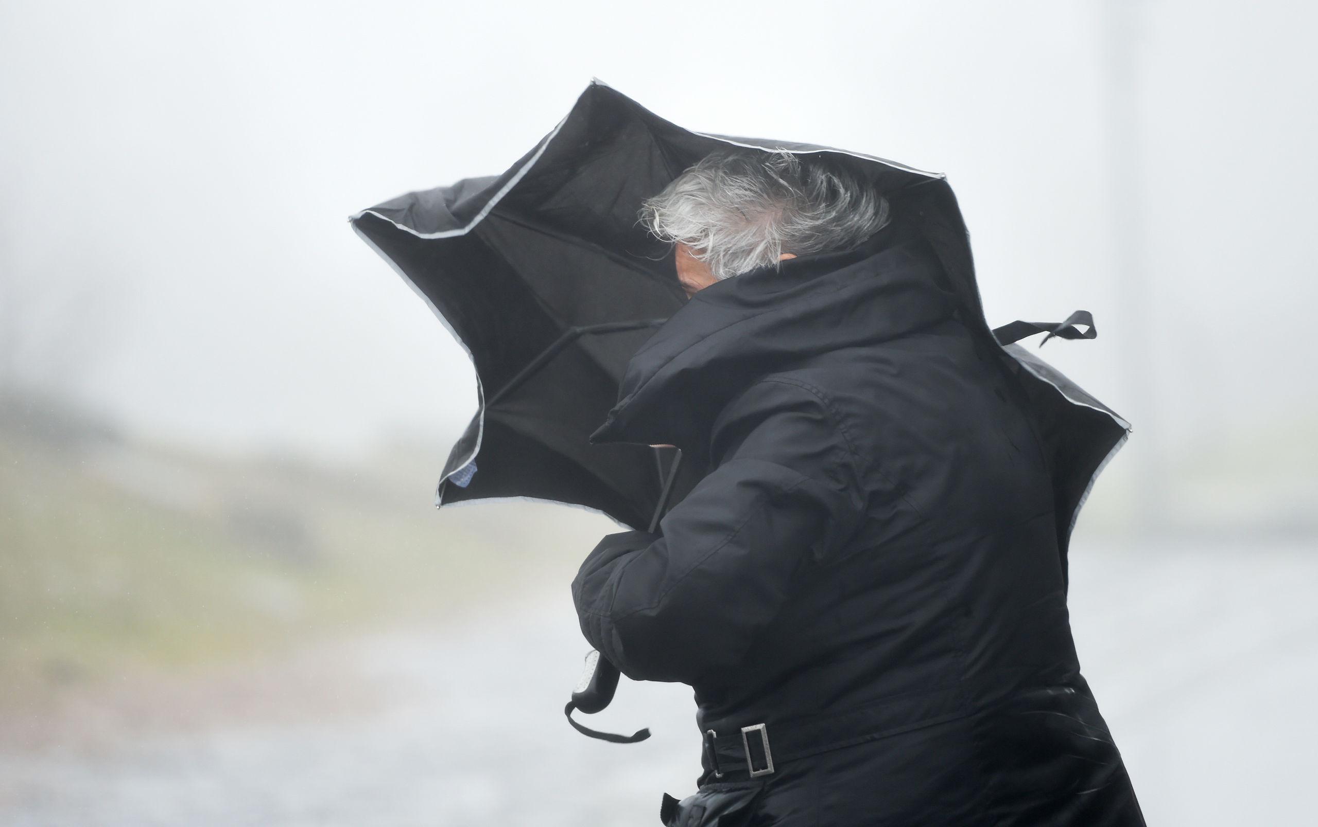 Varning för hårda vindar – nedfallna träd och stängda broar