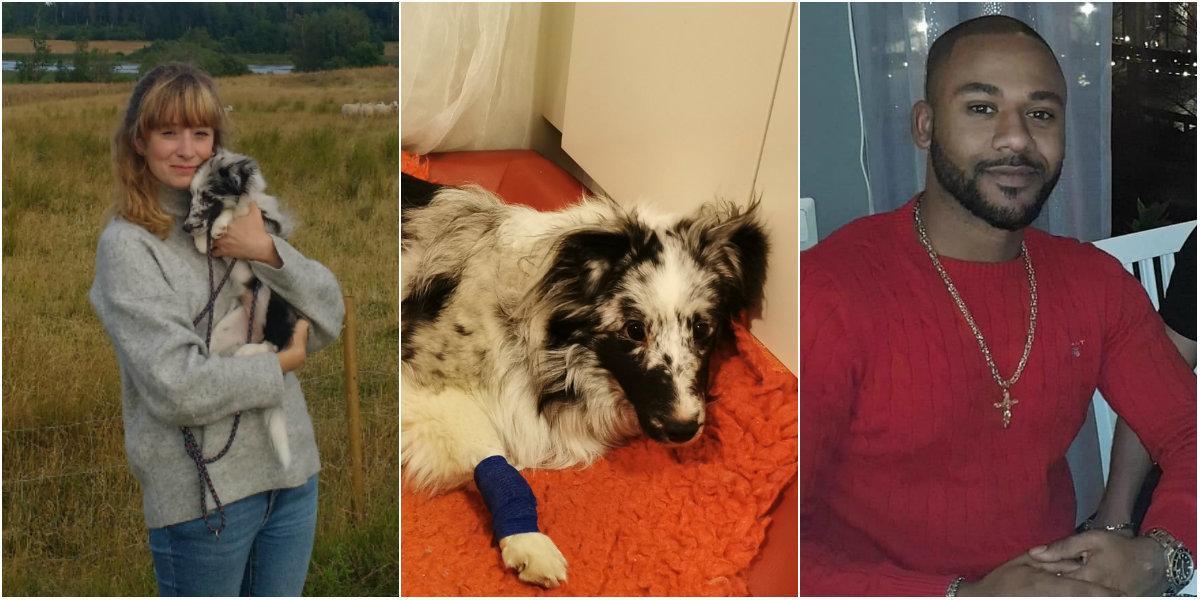 Louises hund slet sig och blev påkörd – räddades av främlingar