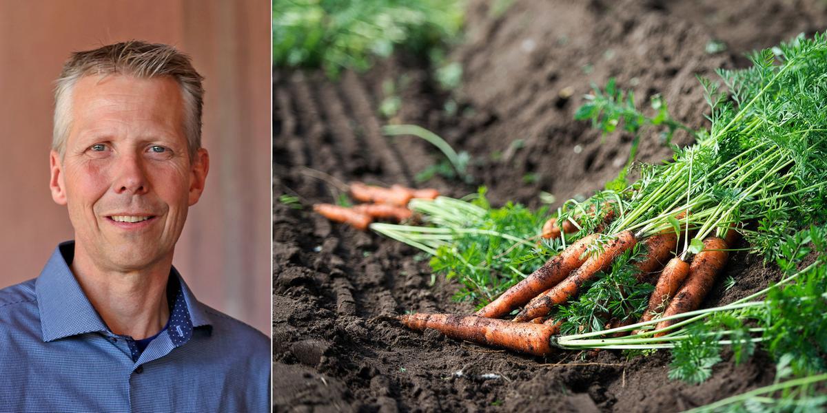 DEBATT: Det enda som hotas av ekologisk odling är kemiföretagens vinster