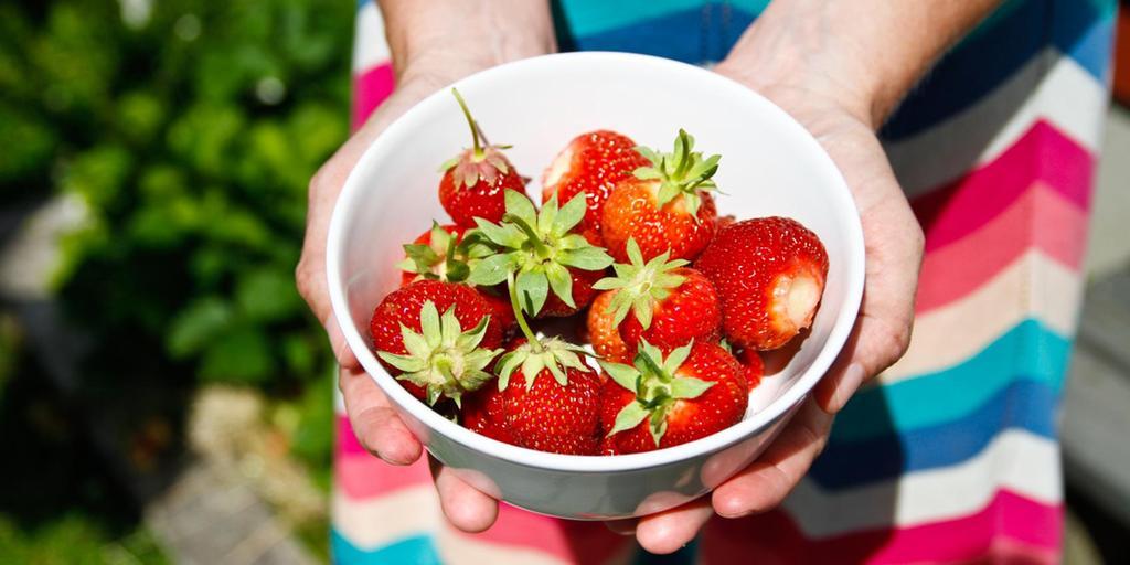 frysa in färska jordgubbar