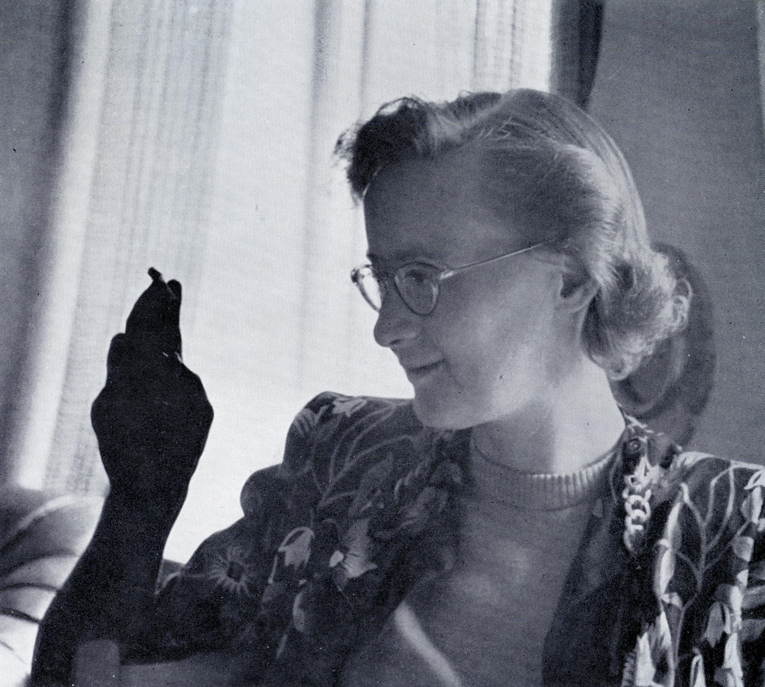 Göteborgs bortglömda författare: Eva Neander