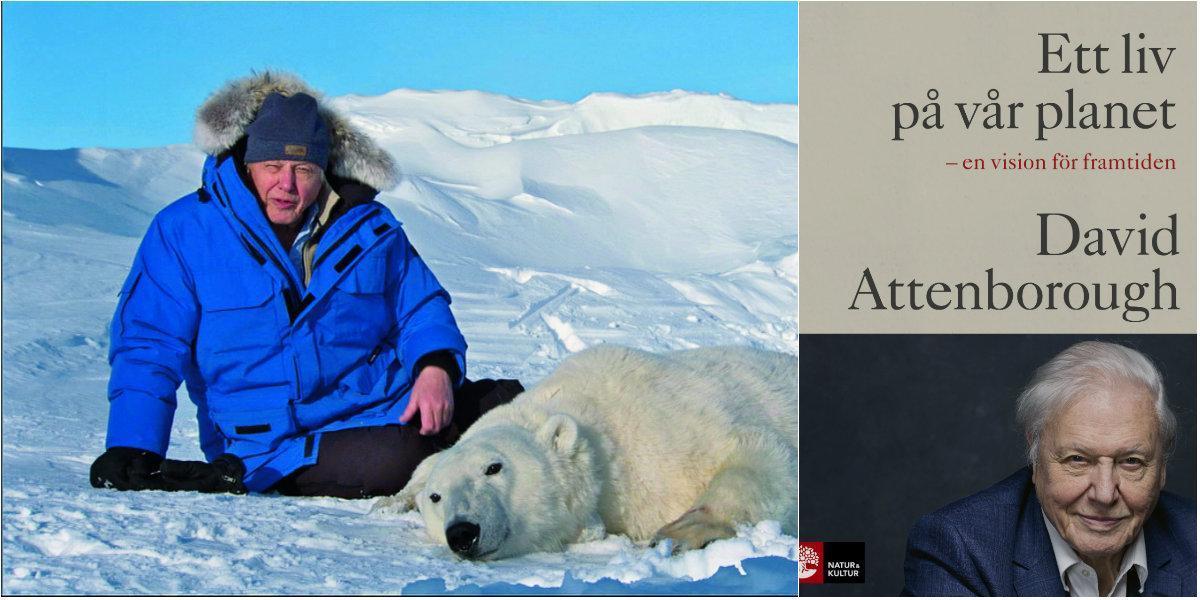 """Recension: ��Ett liv på vår planet – en vision för framtiden"""" av David Attenborough och Jonnie Hughes"""