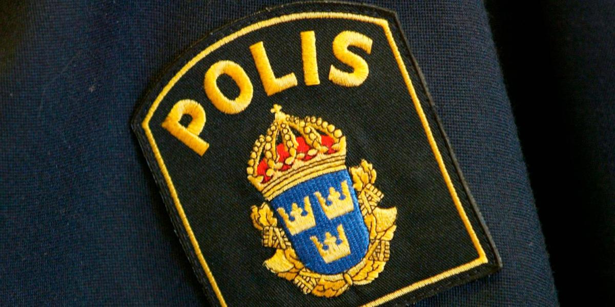 Polis utreder ordval vid Israelprotest  8c11daf58697c
