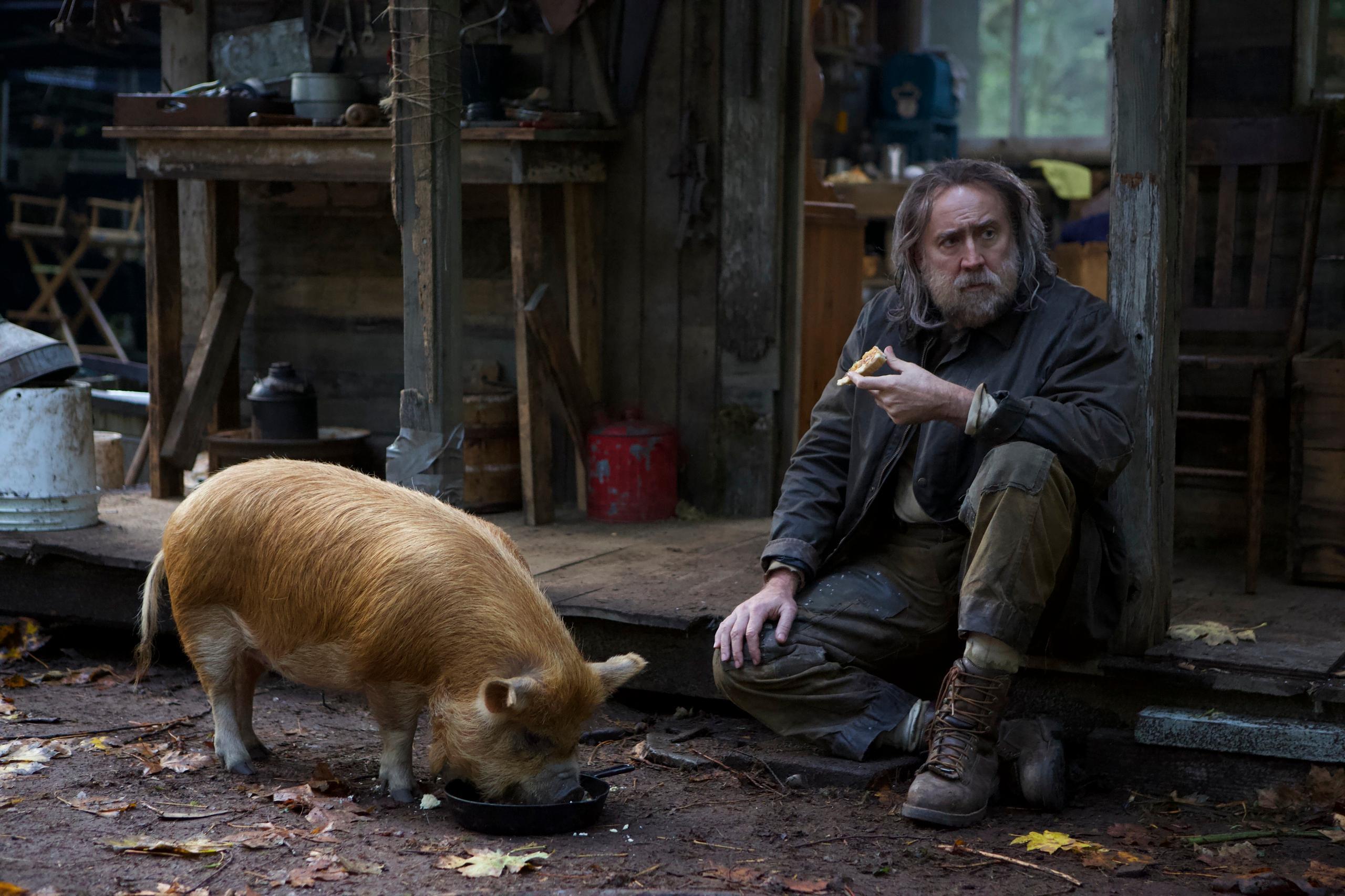 """Recension: """"Pig"""" i regi av Michael Sarnoski"""