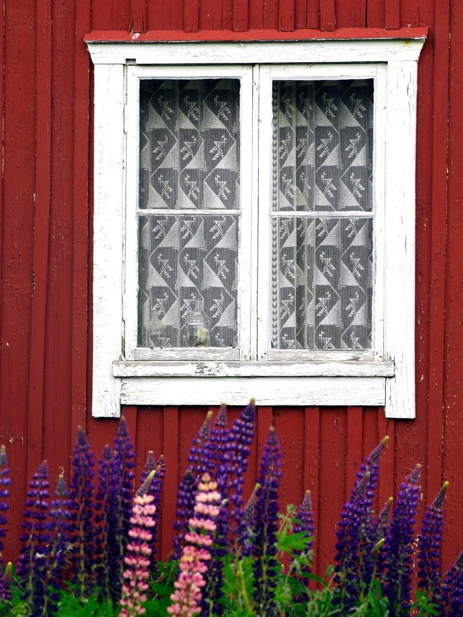Fönster renovera fönster : Fönsterfixa i semestertider