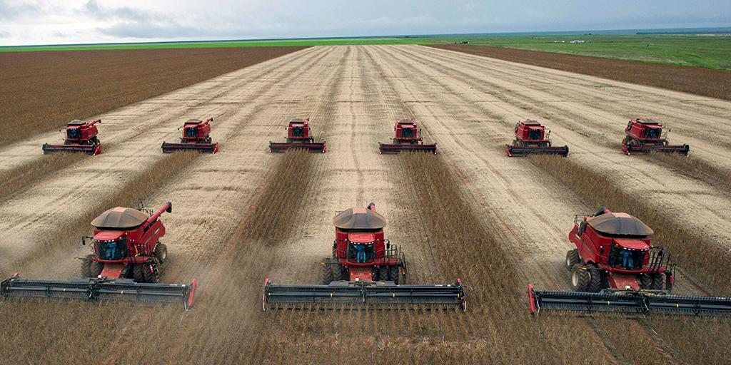 agricoltura industriale non sostenibile